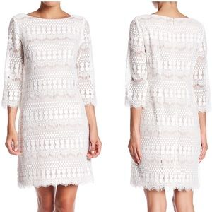 Eliza J 3/4 Length Sleeve Lace Shift Dress ivory 6